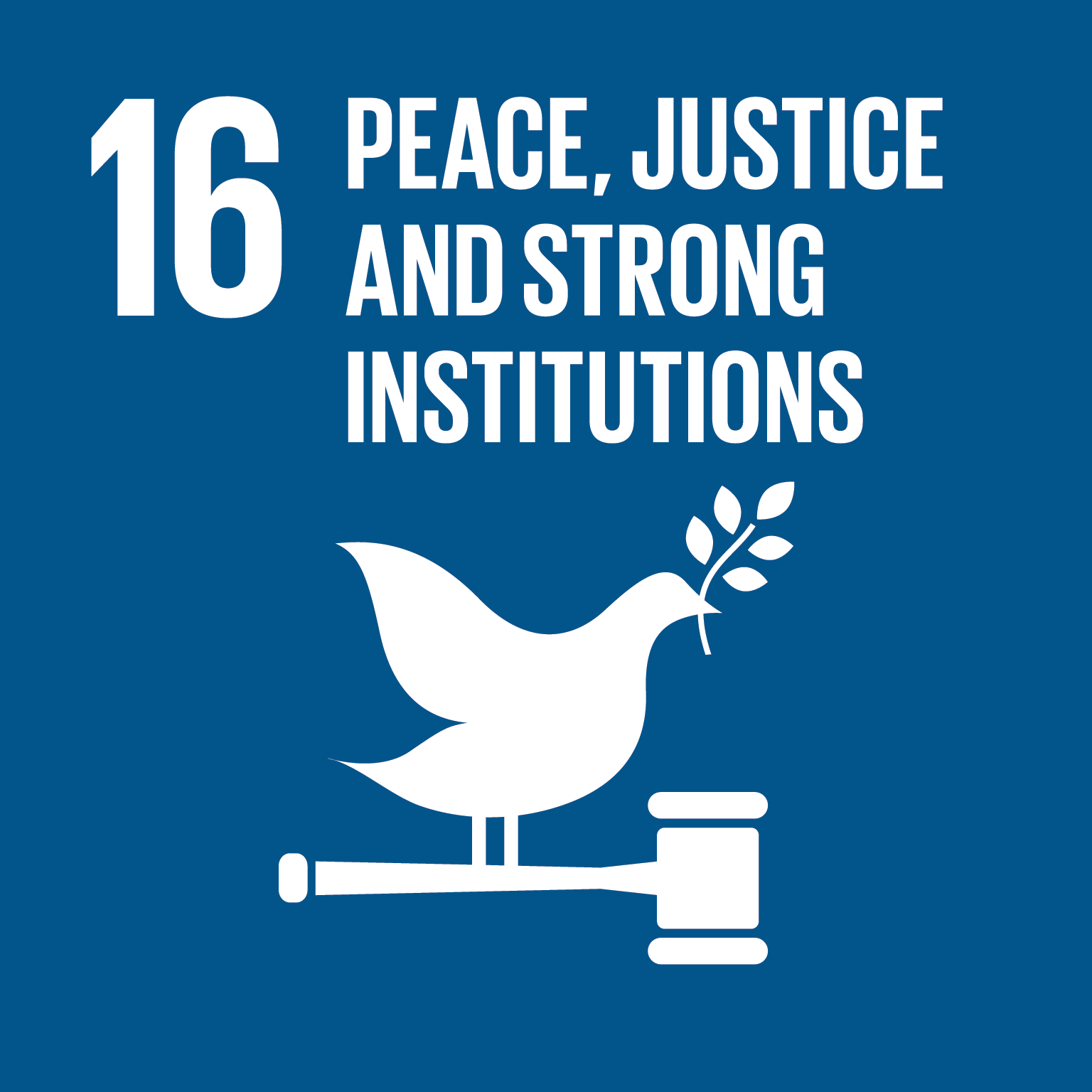 16: Peace, Justice and Strong Institutions